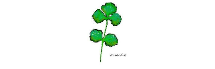 HE Coriandre