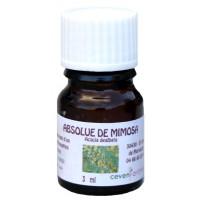 Flacon 3 ml d'Absolue de Mimosa