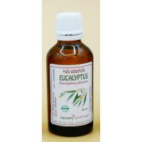 Eucalyptus 50ml Huile essentielle
