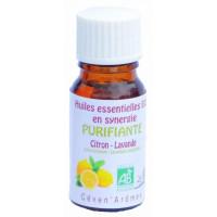 Purifiante - Citron-Lavande